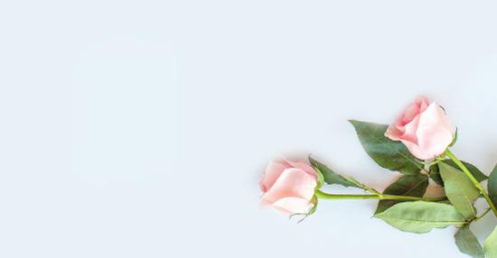 Sympathy Flowers Dartford